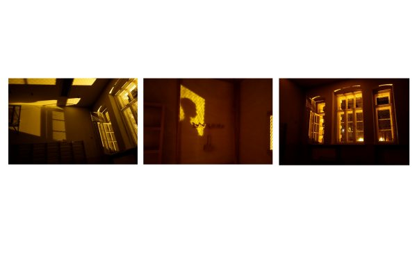 Licht-Schatten (Jg. 11)